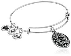 Alex and Ani Because I love you Sister II Expandable Rafaelian SilverTone Bangle Bracelet >>> Want additional info? Click on the image.