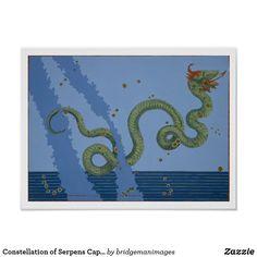 Constellation of Serpens Caput and Serpens Cauda, Poster | Zazzle.com