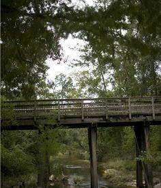 Bridge over Abita River