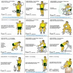 Best Biceps Exercises - Workout Plan For A Big Strong Bicep Arms . Best Biceps Exercises - Workout Plan For A Big Strong Bicep Arms workout plans arms - Workout Plans Kettlebell Arm Workout, Arm Workout Men, Tone Arms Workout, Gym Workout Chart, Biceps Workout, Workout Plans, Workout Exercises, Exercise Plans, Body Exercises