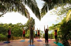 April 9 - 15, 2017: 7 days Yoga Jungle journey in the midst of Mexican finest Pacific. Our host will be the Tailwind Jungle Eco Lodge nestled amidst 5 acres of truly stunning lush jungle and breathtaking beaches of white sand. Re-treat yourself with spectacular coastlines, dramatic sunsets, wide open starry nights, succulent local and seasonal vegetarian meals.