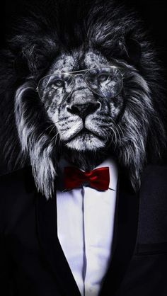 The Corporate Lion iPhone Wallpaper Free - Free PIK PSD Best Picture For animal wallpaper iphone bac Lion Wallpaper Iphone, Wild Animal Wallpaper, Boss Wallpaper, Tier Wallpaper, Iphone Wallpapers, Black Wallpaper, Mafia Wallpaper, Art Roi Lion, Lion King Art