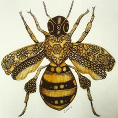 Bee Images, Bee Illustration, I Love Bees, Bug Art, Insect Art, Art Graphique, Bees Knees, Bee Keeping, Queen Bees