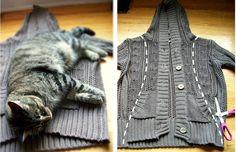 sweater2.JPG (1600×1034)