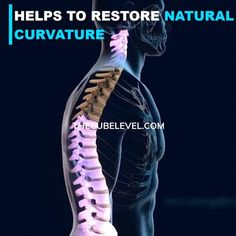 Relieve Back Pain, Low Back Pain, Acupressure, Acupuncture, Wellness Fitness, Yoga Fitness, Gym Workouts, At Home Workouts, Back Stretcher