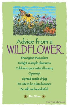 Gardens:  #Advice from a #Wildflower.