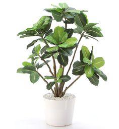 光触媒人工観葉植物 8399「タブノキ(ドングリの木)50cm(白陶器)」