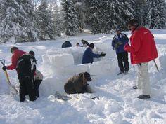 Gemeinsam im Reich der Siedler  Iglus zu bauen stärkt das Teamgefühl! Snow, Outdoor, Winter Landscape, Past, Outdoors, Outdoor Living, Garden, Eyes