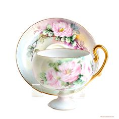 Antique Hand Painted O & E G Royal Austria Porcelain Rose Tea Cup and Saucer Set ~  Just Love Teacups like these!!!