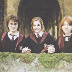 Hogwarts is my home. Harry, Hermione, & Ron are my friends. Harry Potter is my muse. Harry James Potter, Harry Potter Pictures, Harry Potter Cast, Harry Potter Universal, Harry Potter World, Harry Potter Characters, Ron Weasley, Harry Et Hermione, Hermione Granger Hair