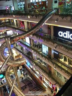 This is not a giant water hose but an escalator in a Shanghai shopping centre.  Customers can slide down from the top floor to the ground by not walking, not standing, but sitting, a bit like what you used to do at your kindergarten's playground :D
