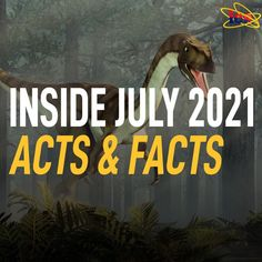Were dragons real creatures? How balanced was our universe 6,000 years ago? Why is Acadia National Park significant for biblical creation? Can scientists replace God with nothing? Discover the answers to these questions and more in the July 2021 issue of Acts & Facts! Are Dragons Real, Acadia National Park, National Parks, Institute For Creation Research, Florida Woman, Life Form, Fun Facts, Acting, Science News