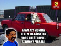 Funny Cute, Ferrari, Lol, Memes, Horses, Meme, Horse, Fun