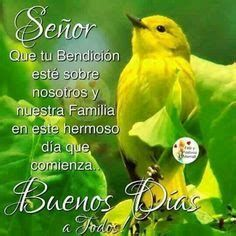 Good Day Wishes, Spanish Inspirational Quotes, Good Morning Inspiration, Happy Week, Motivational Phrases, Morning Messages, Religious Quotes, Dear God, Beautiful Birds