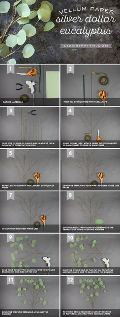 DIY #PaperFlower pattern and tutorials at liagriffith.com/?utm_content=bufferb0eef&utm_medium=social&utm_source=pinterest.com&utm_campaign=buffer