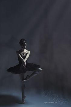 Чёрный лебедь by Mark Crislip on 500px