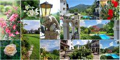 Hotel in Salzburg : Hotel Doktorwirt, Salzburg Salzburg, Mount Rushmore, Hotels, Nature, Naturaleza, Nature Illustration, Off Grid, Natural