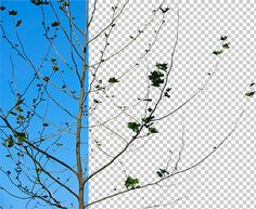 Complex masking made easy with channels and calculations