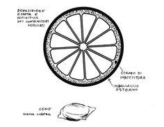 Bruno Munari: progetto Good Design, All'insegna del Pesce d'Oro, Milano, 1963. Courtesy Corraini Edizioni