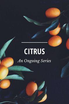 Referência interação foto de comida + tipografia em um título