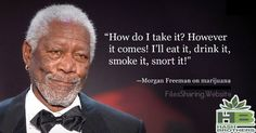 Morgan Freeman 2Day's answer @Hash_Brothers #games #boardgames #CO #Pot #MJ #MMJ #Trivia #Fun #Marijuana #Weed #Dabs #Stoners #Hash #High #Pipes #Lighters @WeedLifeNetwork #stoned #Stoner #ganja #420 #Chronic #Dope #Dab #Stash #Spliff #OR #WA #AK #DC #CA @EmeraldFieldsCO @IndyRecords @TheHealingCanna @MCCaregivers