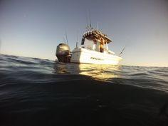 Fishing Machine | Boat Rental in San Diego, CA https://fun2rent.com/Rentals/Boats/Fishing-Boat/Fishing-Machine.html