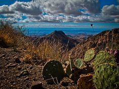 Big Bend National Park, Tx - Overlooking the South Rim by Dolch, via Flickr