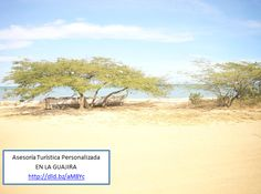La canoa del pescador... Consultenos Paraiso Natural, Beach, Water, Photography, Outdoor, Beautiful, Angler Fish, Tourism, Colombia