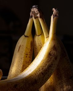Banana Fruit Still Life Photograph Moody Abstract by MollysMuses