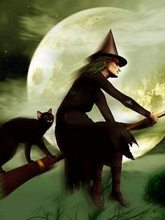 witch and cat - Google Search