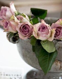 Lovey Roses