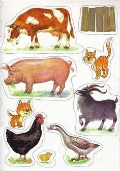 Craft Activities For Kids, Crafts For Kids, Baby Farm Animals, Paper Doll House, Farm Pictures, Clay Birds, Animal 2, Bible Crafts, Paper Toys