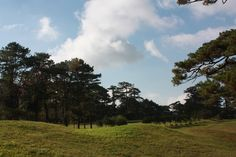 Baguio Country Club, Philippines. I believe Dad would golf here...