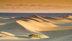 Maspalomas at sunset in Gran Canaria