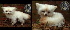 SOLD - Handmade Poseable Baby Vanilla Fox! by Wood-Splitter-Lee on DeviantArt