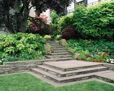 Ron Herman Landscape Architect - traditional - landscape - san francisco - by Ron Herman Landscape Architect Privacy Plants, Privacy Landscaping, Landscaping With Rocks, Garden Landscaping, Landscaping Ideas, Landscape Stairs, Landscape Design, Landscape Architecture, Steep Gardens