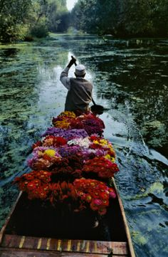 Flower boat. Del Lake, Kashmir, India.