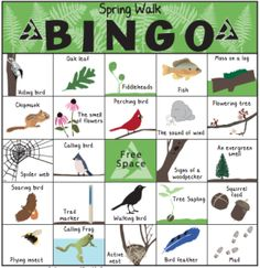Nature Bingo & Scavenger Hunts Last winter we ask our readers what their favorite snowy day activities were. One recommendation was to play outdoor bingo with Mass Audubon's Winter Walk … Nature Activities, Spring Activities, Activities For Kids, Outdoor Activities, Cub Scouts, Girl Scouts, Tiger Scouts, Scout Mom, Girl Scout Camping