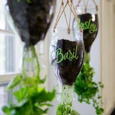 Hanging herb planters; upside-downcycle