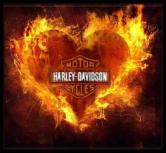 Harley Davidson Events Is for All Harley Davidson Events Happening All Over The world Harley Davidson Decals, Harley Davidson Pictures, Harley Davidson Wallpaper, Hd Motorcycles, Harley Davidson Motorcycles, Motorcycle Art, Bike Art, Image St Valentin, Harley Bikes