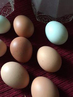 Creekside Cottage: Fresh Eggs