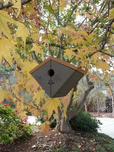 A contemporary chalet-style birdhouse. In granite brown.