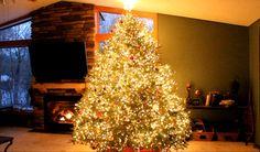 Unglaubliche Light Show am Weihnachtsbaum - http://www.dravenstales.ch/unglaubliche-light-show-am-weihnachtsbaum/