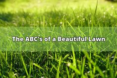 It's always the right time to learn how to get a head start on a lush, beautiful law. With the right preparation, fertilizer, weed control, mowing and aerating tips, you'll have the lawn of your dreams in no time. Weed Control  Weed control is an ongoing process. Many broadleaf weeds that plague your... - #lawn #weed control #fertilizer #soil #fertilizing