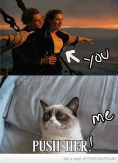 grumpy cat Somehow this made me laugh way harder than it should have. -- Grumpy Cat Watches Titanic by DoranBladefist on deviantA. Grumpy Cat Quotes, Funny Grumpy Cat Memes, Funny Animal Jokes, Stupid Funny Memes, Cute Funny Animals, Funny Animal Pictures, Animal Memes, Funny Cats, Grumpy Kitty