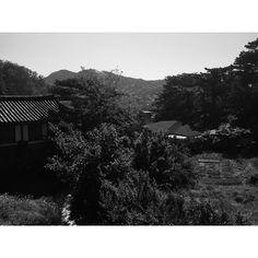 장소헌팅중...지나는길에... 여기 서울 맞습니다... 아직도 서울에 이런 풍경이 남아있다니...
