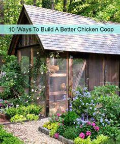 10 Ways To Build A Better Chicken Coop Read HERE --- > http://www.livinggreenandfrugally.com/10-ways-build-better-chicken-coop/