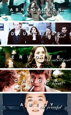 Divergent, The Hunger Games, The Mortal Instruments, Harry Potter, The Fault in our Stars, The Host