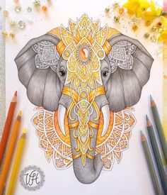 ideas for tattoo elephant color zentangle Mandala Drawing, Mandala Art, Elephant Tattoo Design, Tattoo Elephant, Indian Elephant Tattoos, Colorful Elephant Tattoo, Colorful Tattoos, Animal Drawings, Art Drawings
