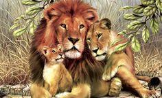 Big cats Lions Painting Art Three 3 Animals lion wallpaper background